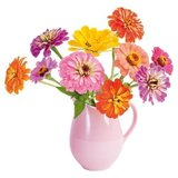 Raamsticker flat flowers zinnia_