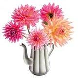 Raamsticker flat flowers dahlia koffiepot_
