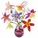 Raamsticker flat flowers mix boeket_