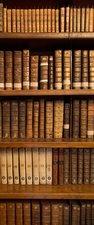 SALE: deursticker boekenkast 60x145cm (BxL)