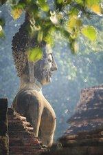 SALE: Muursticker Boeddha in de natuur 93x140cm (BxL)