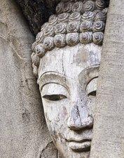 Tegelsticker boeddha hout 15x15cm