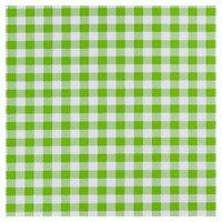 Plakfolie rol 200x45cm ruitjes groen