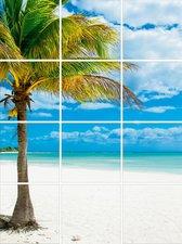 Foto tegelsticker 15x15 'Palmboom' 60x45 cm hxb