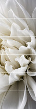 Foto tegelsticker 15x15 'Dahlia' 90x30 cm hxb