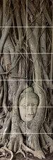 Foto tegelsticker 15x15 'Boeddha hoofd met boom' 90x30 cm hxb