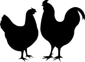 Raamsticker kippen