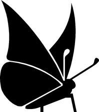 Raamsticker vlinder