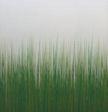 Lineafix statisch raamfolie Gras