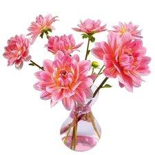 Raamsticker flat flowers dahlia