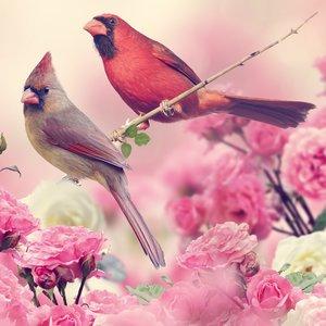 Tegelsticker bloemen en vogels 15x15cm