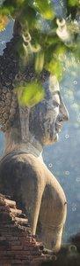 SALE: Muursticker Boeddha in de natuur 55x200cm (BxL)