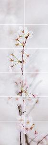 Foto tegelsticker 15x15 'kersenbloesem wit' 90x30 cm hxb