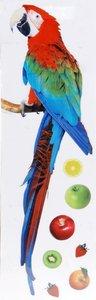 Raamstickers papegaai